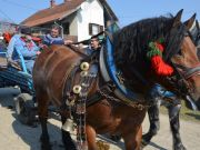 sajam-Cetingrad-2015-17
