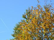 Jesen-2017-01