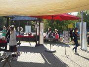 Festival_Medin_brlog_Grabovac-02